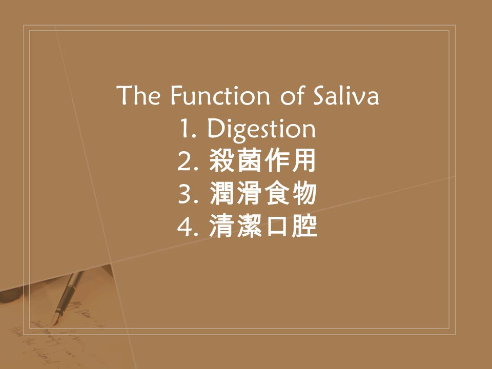 The Function of Saliva 1. Digestion 2. 殺菌作用 3. 潤滑食物 4. 清潔口腔