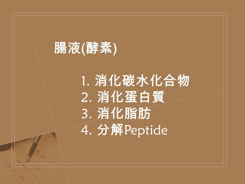 腸液 ( 酵素 ) 1. 消化碳水化合物 2. 消化蛋白質 3. 消化脂肪 4. 分解 Peptide