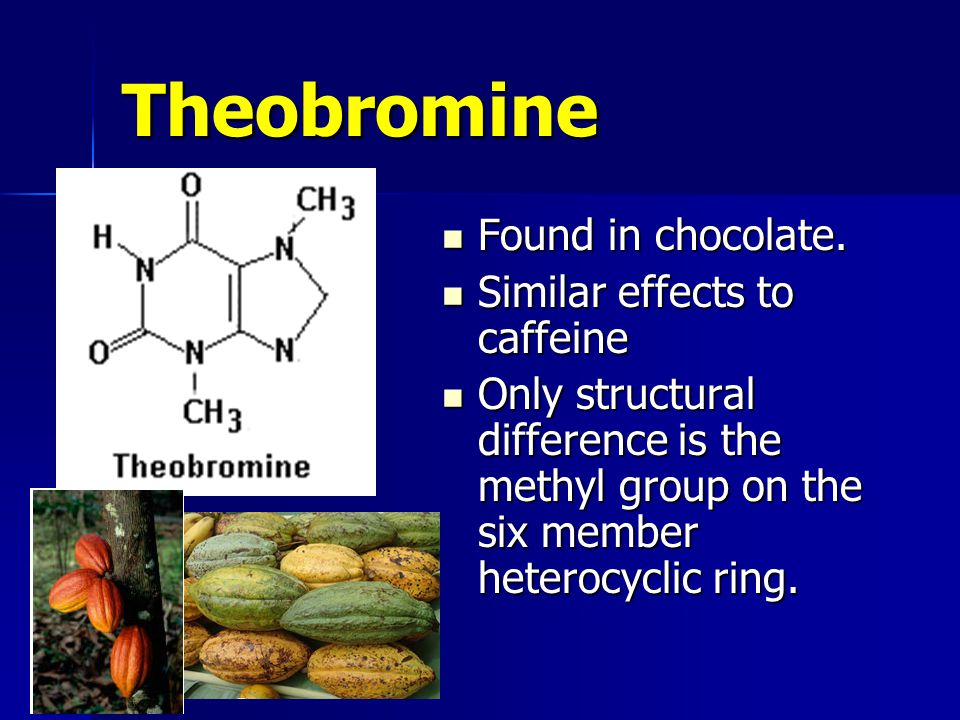 Theobromine Found in chocolate. Found in chocolate.