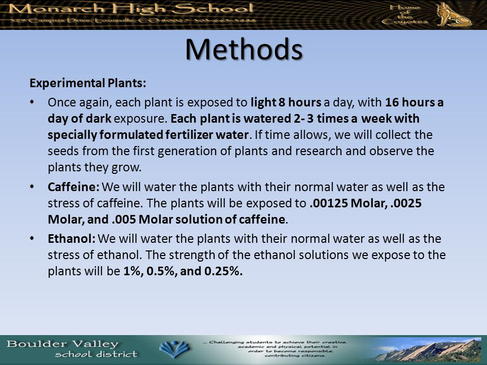 Methods Experimental Plants: Once again, each plant is exposed to light 8 hours a day, with 16 hours a day of dark exposure. Each plant is watered 2-
