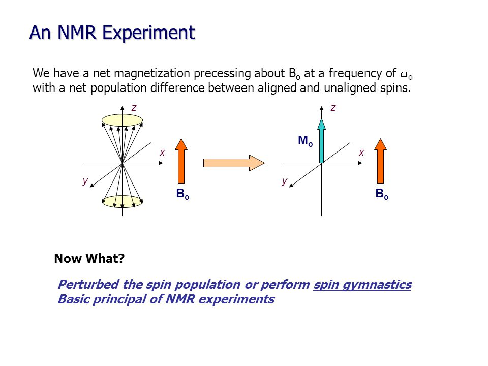 An NMR Experiment MoMo y x z x y z BoBo BoBo We have a net magnetization precessing about B o at a frequency of  o with a net population difference b