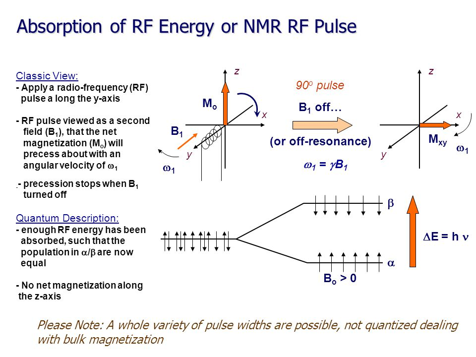 Classic View: - Apply a radio-frequency (RF) pulse a long the y-axis - RF pulse viewed as a second field (B 1 ), that the net magnetization (M o ) wil