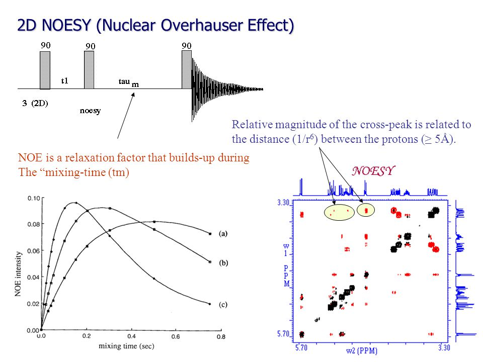 2D NOESY (Nuclear Overhauser Effect) Relative magnitude of the cross-peak is related to the distance (1/r 6 ) between the protons (≥ 5Ǻ). NOE is a rel