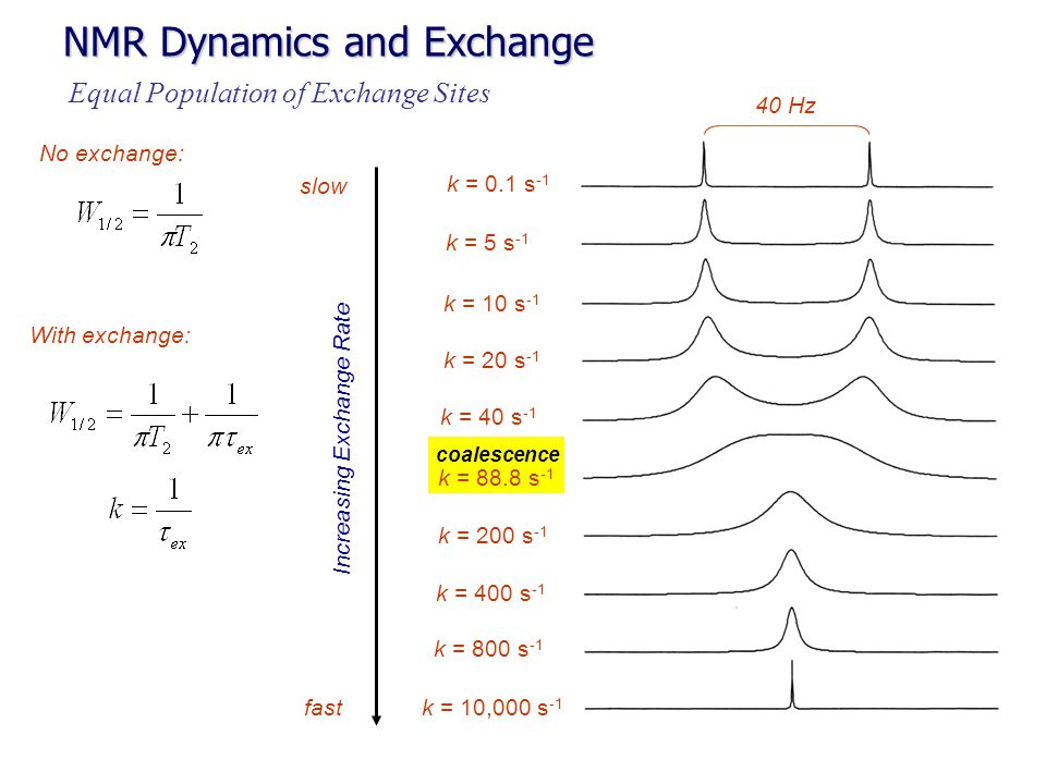 coalescence NMR Dynamics and Exchange k = 0.1 s -1 k = 5 s -1 k = 200 s -1 k = 88.8 s -1 k = 40 s -1 k = 20 s -1 k = 10 s -1 k = 400 s -1 k = 800 s -1