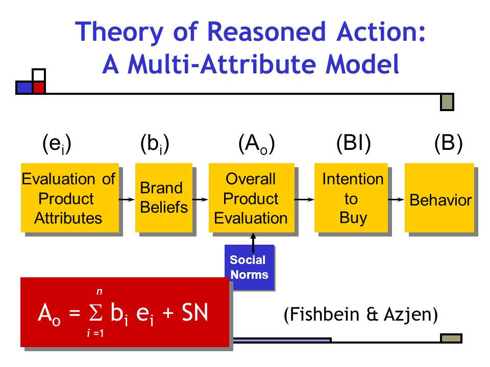 Social Norms Social Norms Theory of Reasoned Action: A Multi-Attribute Model Evaluation of Product Attributes Brand Beliefs Overall Product Evaluation Intention to Buy Behavior n A o =  b i e i + SN (Fishbein & Azjen) i =1 (e i )(b i )(A o )(BI)(B)
