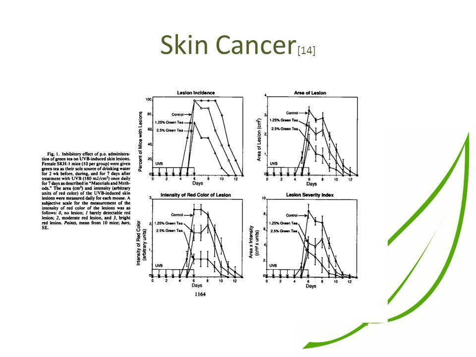 Skin Cancer [14]