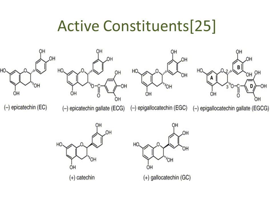 Active Constituents[25]