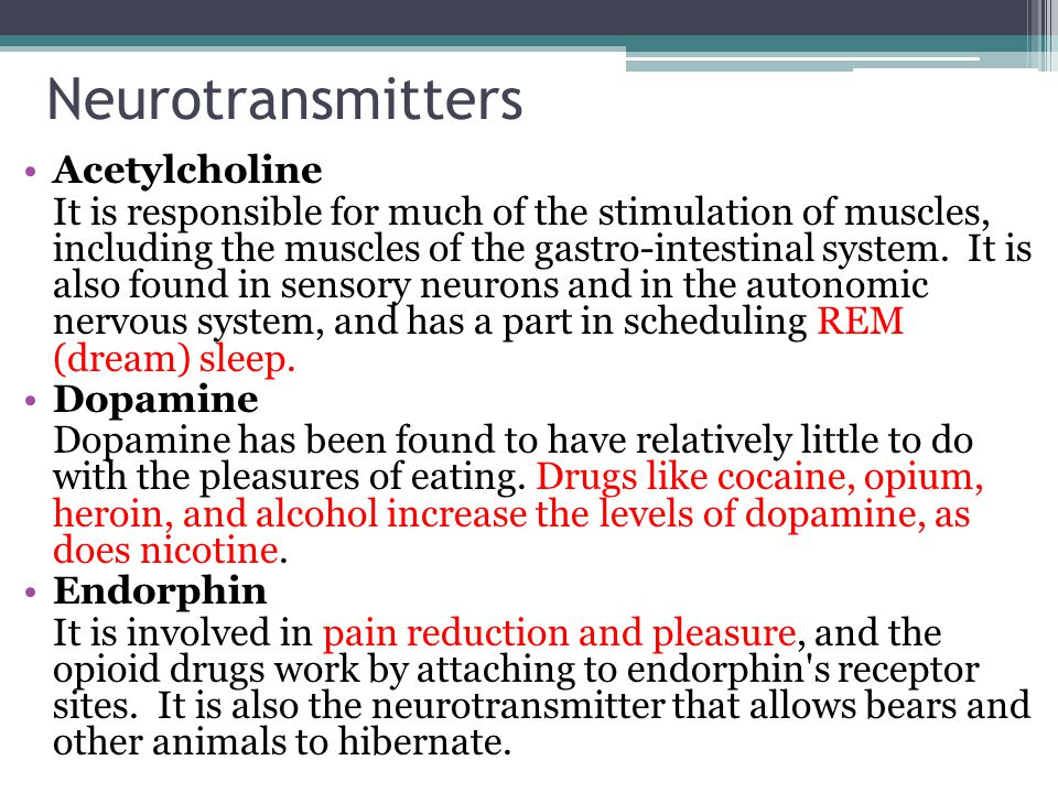Neurotransmitters Acetylcholine It is responsible for much of the stimulation of muscles, including the muscles of the gastro-intestinal system.