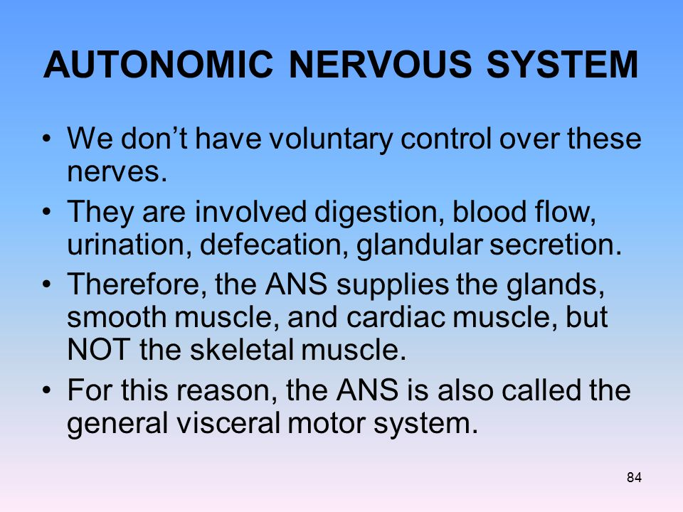 AUTONOMIC NERVOUS SYSTEM We don't have voluntary control over these nerves. They are involved digestion, blood flow, urination, defecation, glandular
