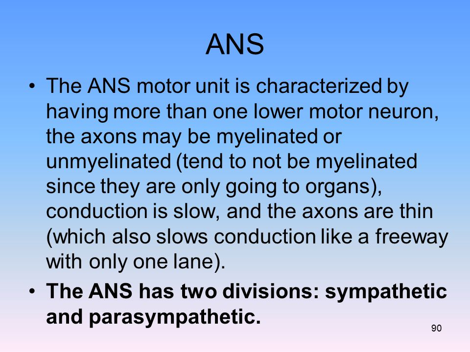 ANS The ANS motor unit is characterized by having more than one lower motor neuron, the axons may be myelinated or unmyelinated (tend to not be myelin