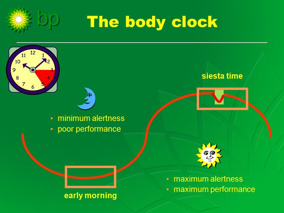 The body clock ▪ minimum alertness ▪ poor performance ▪ maximum alertness ▪ maximum performance early morning siesta time