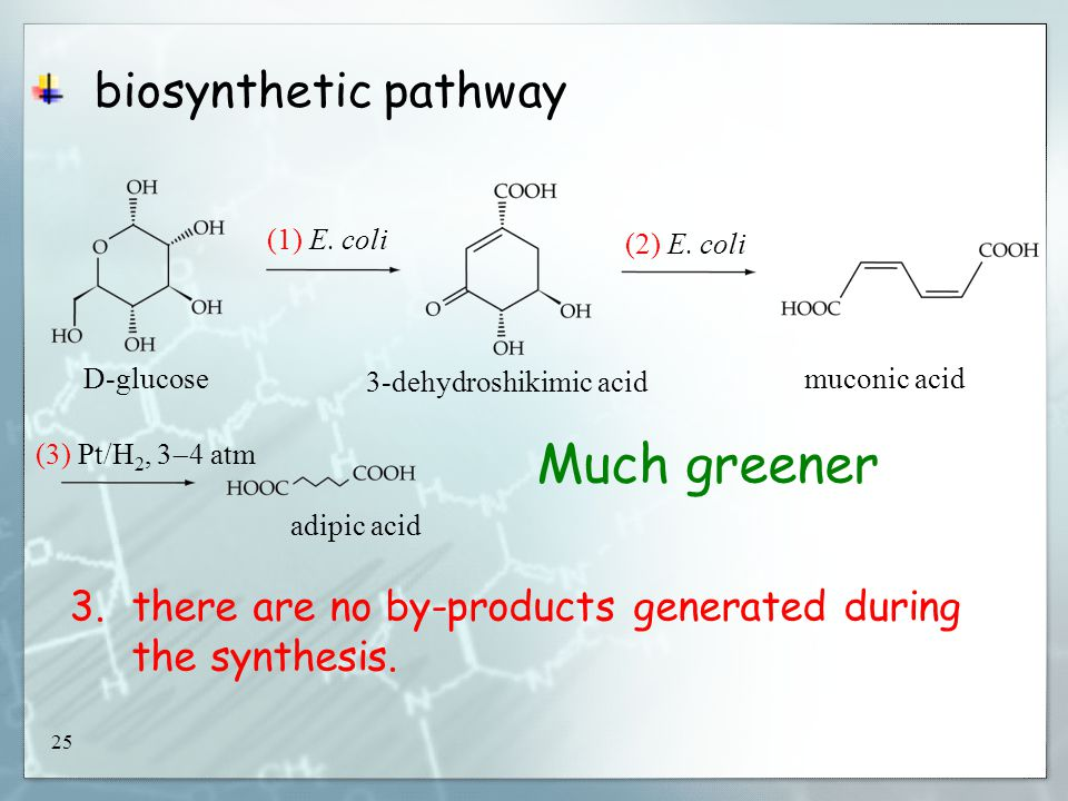 25 biosynthetic pathway D-glucose (1) E.