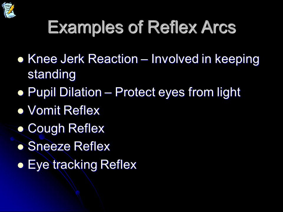 Examples of Reflex Arcs Knee Jerk Reaction – Involved in keeping standing Knee Jerk Reaction – Involved in keeping standing Pupil Dilation – Protect e