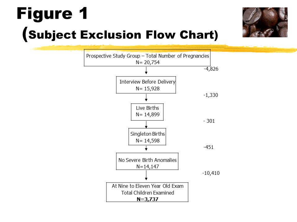 Figure 1 ( Subject Exclusion Flow Chart) Prospective Study Group – Total Number of Pregnancies N= 20,754 -4,826 Interview Before Delivery N= 15,928 -1,330 Live Births N= 14,899 - 301 Singleton Births N= 14,598 -451 No Severe Birth Anomalies N=14,147 -10,410 At Nine to Eleven Year Old Exam Total Children Examined N=3,737