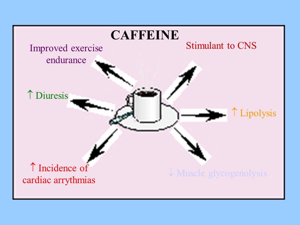 Improved exercise endurance Stimulant to CNS  Diuresis  Incidence of cardiac arrythmias  Muscle glycogenolysis  Lipolysis CAFFEINE