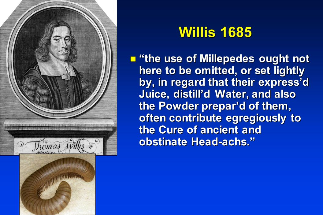 Willis 1685 n the use of Millepedes ought not here to be omitted, or set lightly by, in regard that their express'd Juice, distill'd Water, and also the Powder prepar'd of them, often contribute egregiously to the Cure of ancient and obstinate Head-achs.