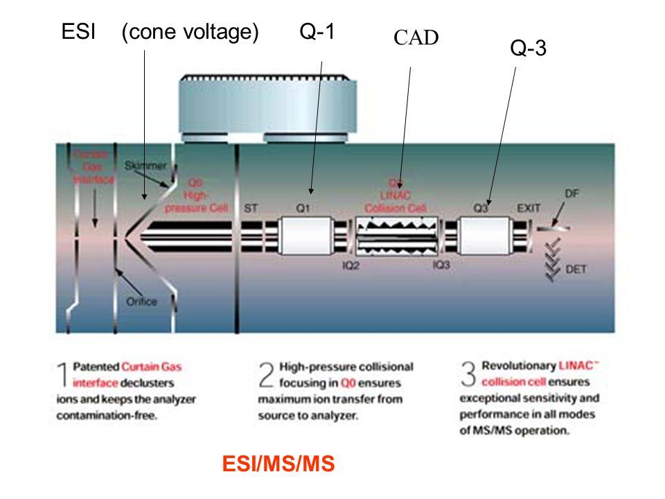 ESI (cone voltage)Q-1 CAD Q-3 ESI/MS/MS
