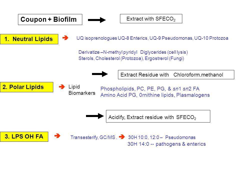 Coupon + Biofilm Extract with SFECO 2 1. Neutral Lipids UQ isoprenologues UQ-8 Enterics, UQ-9 Pseudomonas, UQ-10 Protozoa Derivatize –N-methyl pyridyl