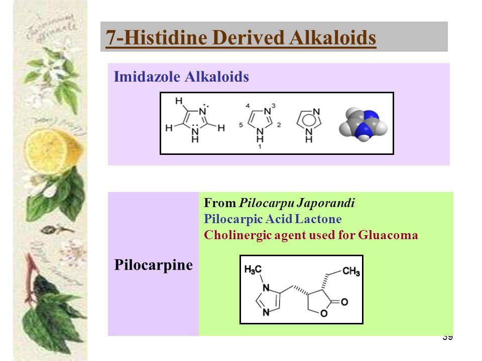 39 7-Histidine Derived Alkaloids Pilocarpine From Pilocarpu Japorandi Pilocarpic Acid Lactone Cholinergic agent used for Gluacoma Imidazole Alkaloids