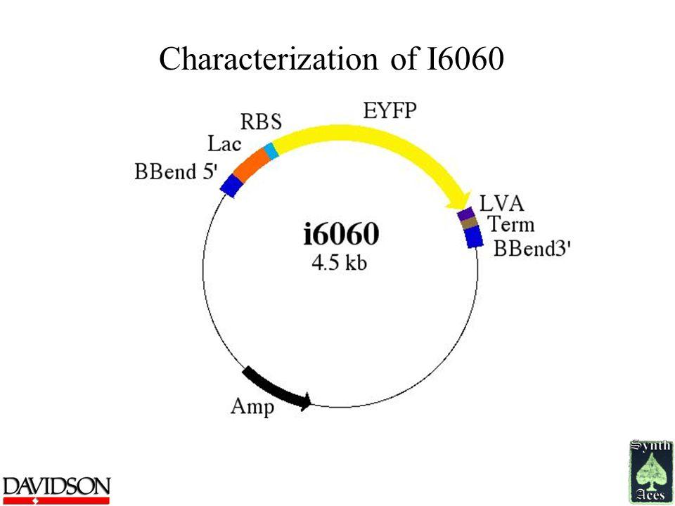 Characterization of I6060