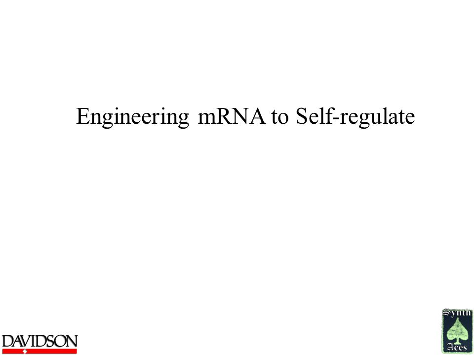 Engineering mRNA to Self-regulate
