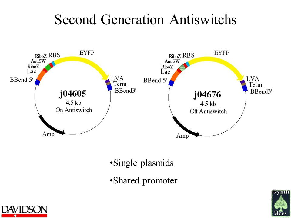 Second Generation Antiswitchs Single plasmids Shared promoter