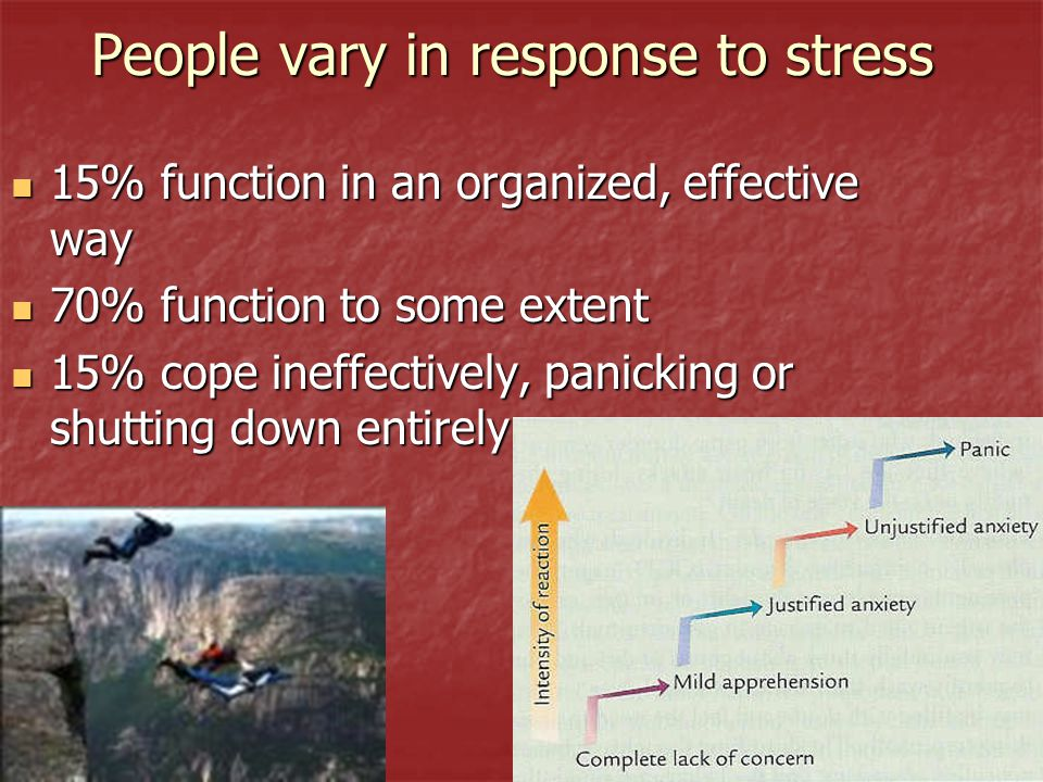 People vary in response to stress 15% function in an organized, effective way 15% function in an organized, effective way 70% function to some extent