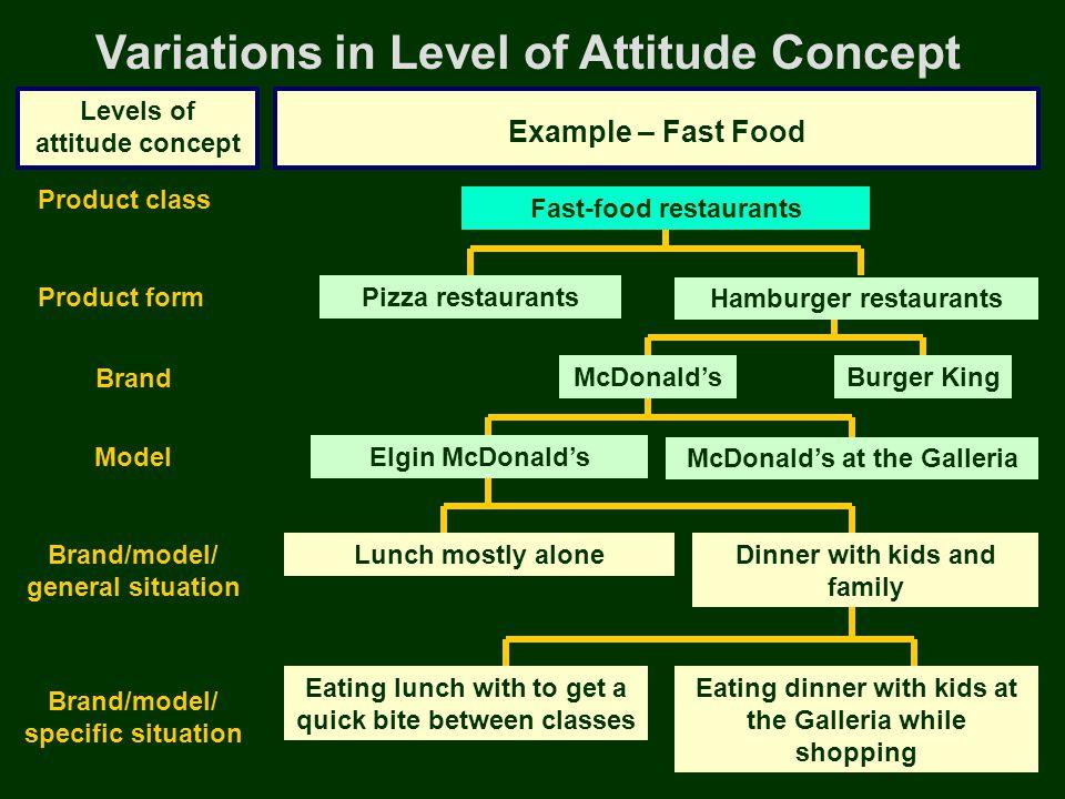 Variations in Level of Attitude Concept Levels of attitude concept Example – Fast Food Pizza restaurants Fast-food restaurants Burger King Hamburger r