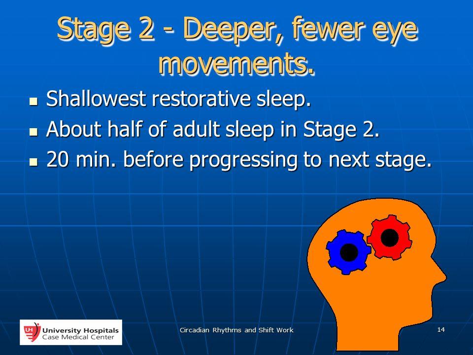 Circadian Rhythms and Shift Work 14 Stage 2 - Deeper, fewer eye movements.
