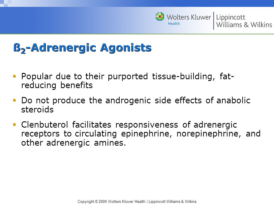 ß 2 -Adrenergic Agonists  Popular due to their purported tissue-building, fat- reducing benefits  Do not produce the androgenic side effects of anab