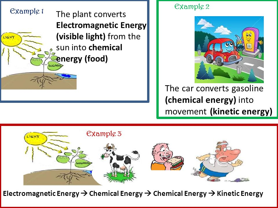 Example 1 Example 2 Example 3 The plant converts Electromagnetic Energy (visible light) from the sun into chemical energy (food) The car converts gasoline (chemical energy) into movement (kinetic energy) Electromagnetic Energy  Chemical Energy  Chemical Energy  Kinetic Energy