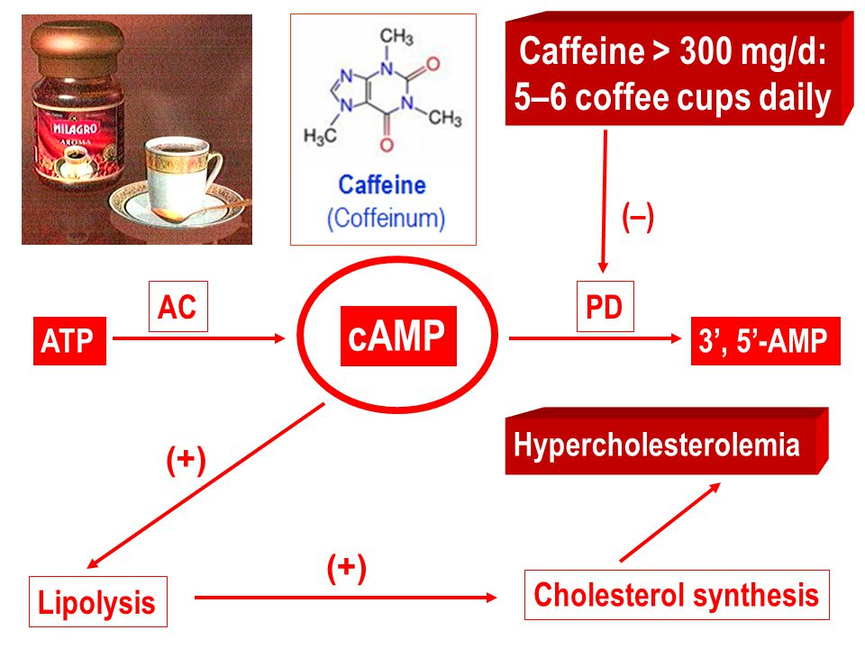 caffeine generally decreases heart rate. Cardiac output is increased. This action is more marked in CHF patients. At high doses cardiac arrhythmias ma