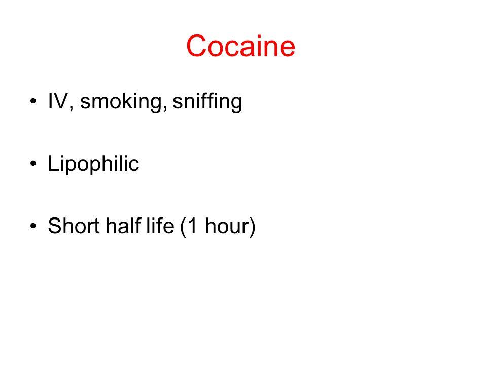 Cocaine IV, smoking, sniffing Lipophilic Short half life (1 hour)