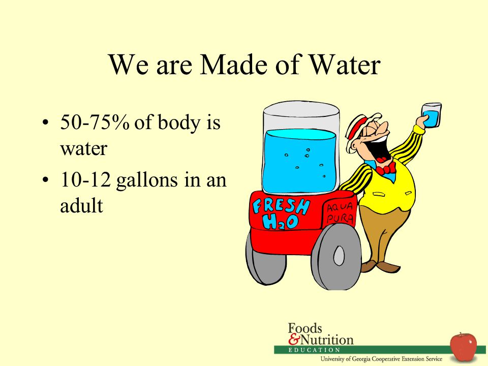 We are Made of Water 50-75% of body is water 10-12 gallons in an adult
