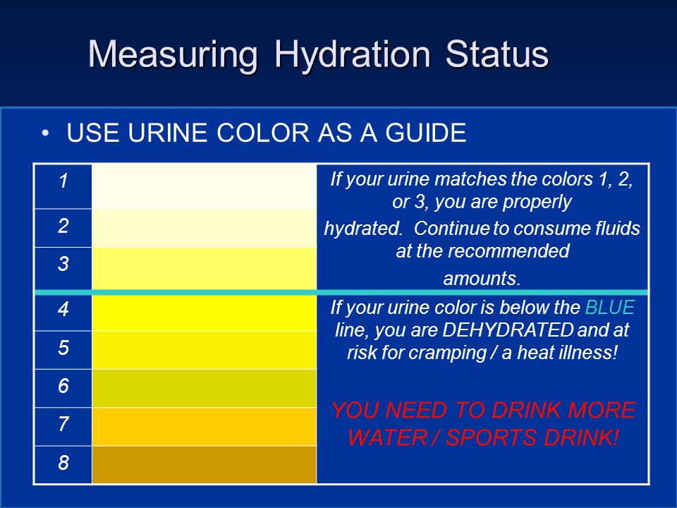 Measuring Hydration Status USE URINE COLOR AS A GUIDE 1 If your urine matches the colors 1, 2, or 3, you are properly hydrated.