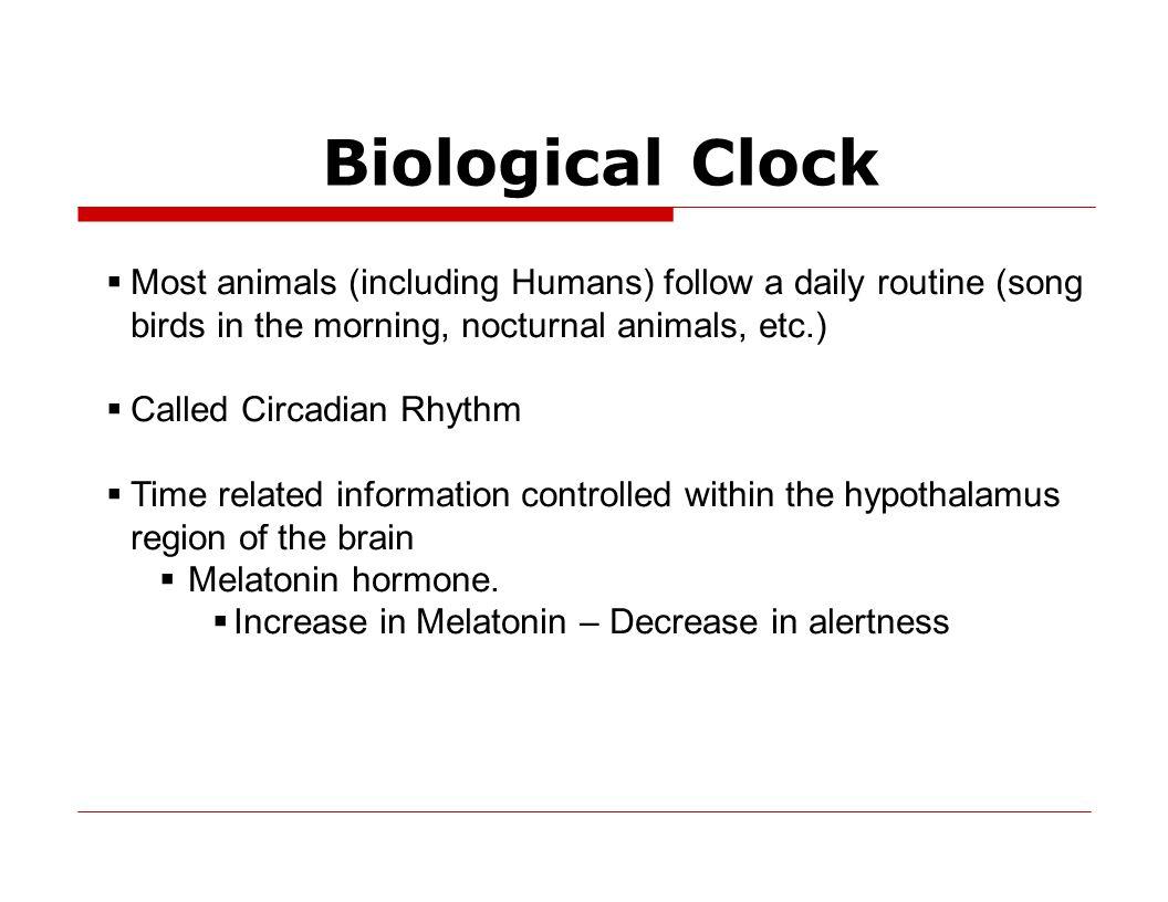 Biological Clock  Human Circadian Rhythm is actually on a 25 hour clock.