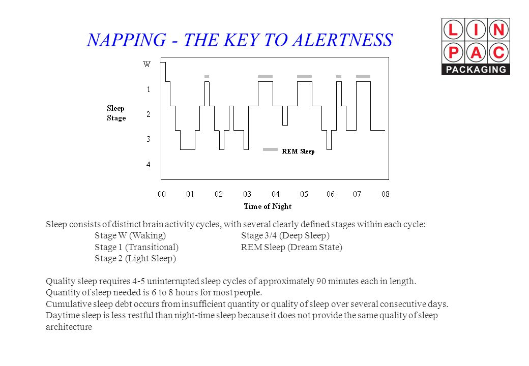 NAPPING - THE KEY TO ALERTNESS Sleep consists of distinct brain activity cycles, with several clearly defined stages within each cycle: Stage W (Waking)Stage 3/4 (Deep Sleep) Stage 1 (Transitional)REM Sleep (Dream State) Stage 2 (Light Sleep) Quality sleep requires 4-5 uninterrupted sleep cycles of approximately 90 minutes each in length.