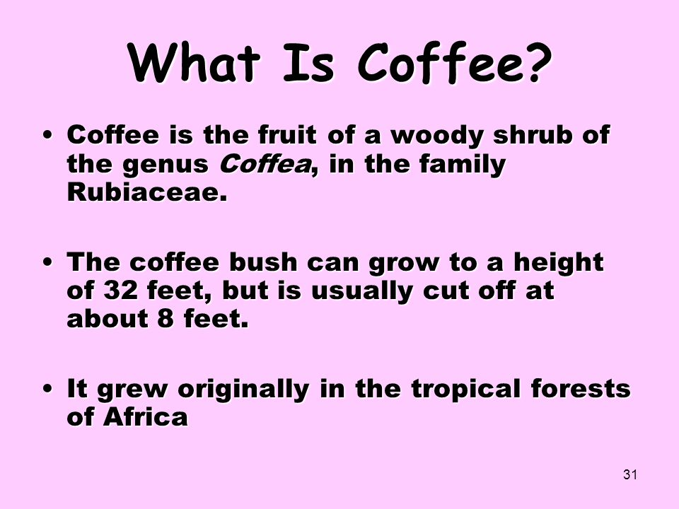 31 What Is Coffee? Coffee is the fruit of a woody shrub of the genus Coffea, in the family Rubiaceae.Coffee is the fruit of a woody shrub of the genus