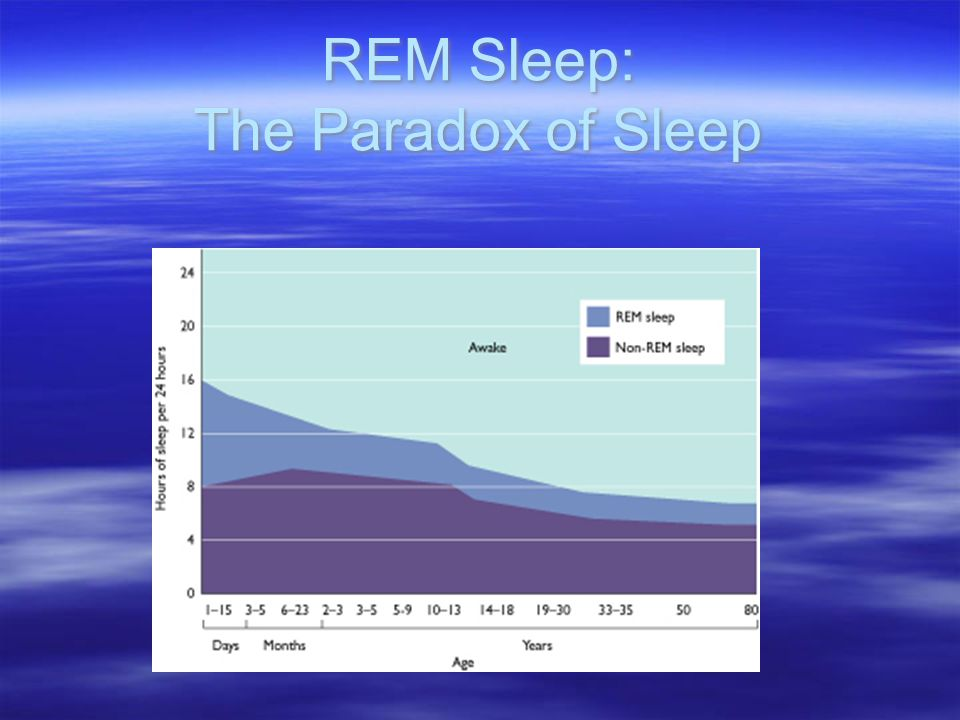 REM Sleep: The Paradox of Sleep
