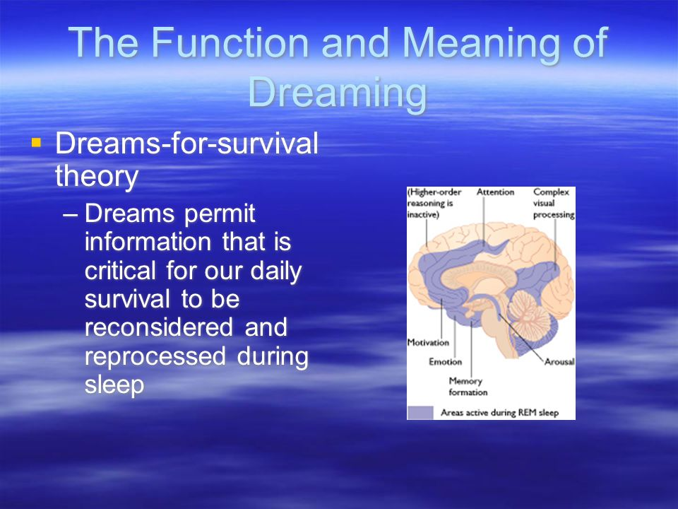 The Function and Meaning of Dreaming  Activations-synthesis theory –The brain produces random electrical energy during REM sleep that stimulates memories lodged in various portions of the brain which are put together to make a logical story line  Activations-synthesis theory –The brain produces random electrical energy during REM sleep that stimulates memories lodged in various portions of the brain which are put together to make a logical story line