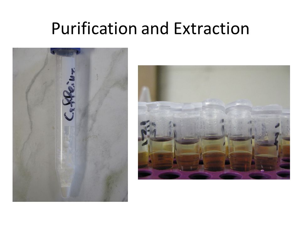 Purification and Extraction