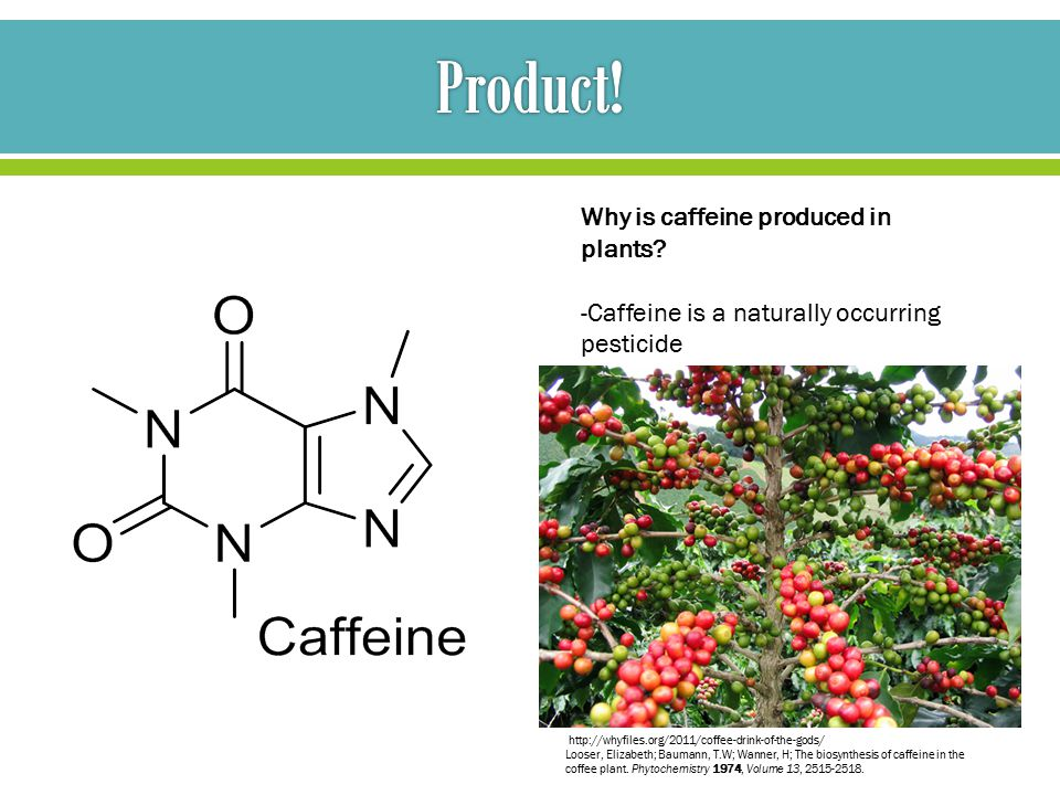 Why is caffeine produced in plants.