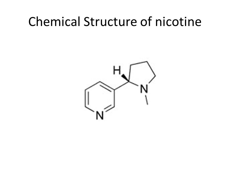 Chemical Structure of nicotine