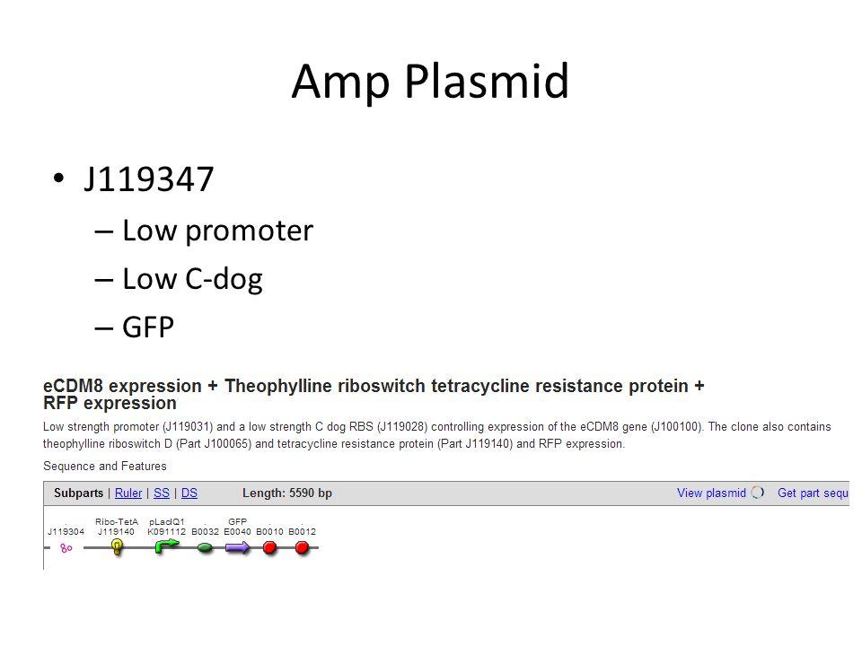 20 Clones Amp Plasmid – Promoter – C dog High-High versus Low-Low – Origin pSB1A2 High copy number J119310 Low copy number Chlor plasmid, pSB4C5 – Chaperones pG-Tf2 pTf16 pG-KJE8 pGro7 pKJE7