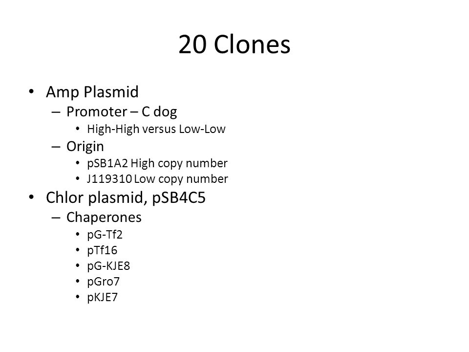 20 Clones Amp Plasmid – Promoter – C dog High-High versus Low-Low – Origin pSB1A2 High copy number J119310 Low copy number Chlor plasmid, pSB4C5 – Chaperones pG-Tf2 pTf16 pG-KJE8 pGro7 pKJE7