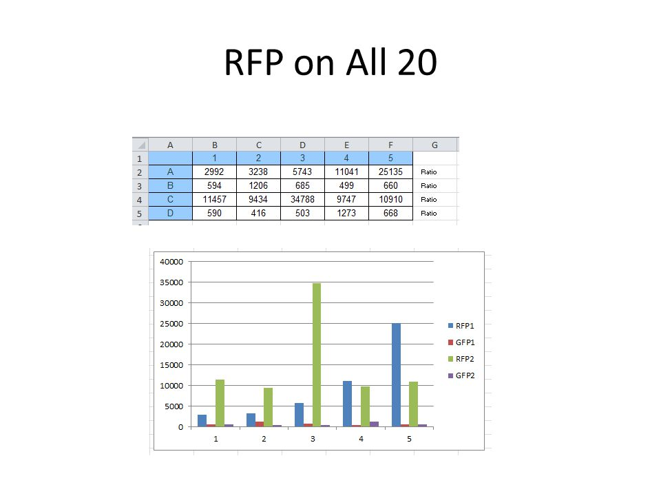 Origin PCR All are pSB1A2 All are J119310 with 500 bp with 750 bp