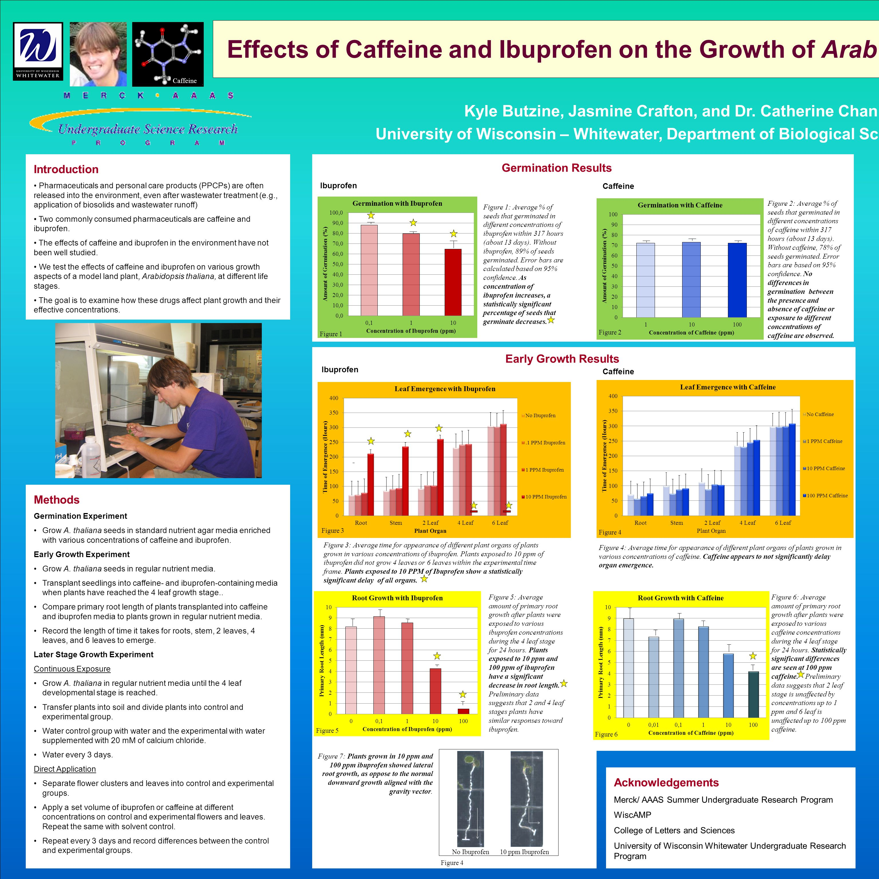 Effects of Caffeine and Ibuprofen on the Growth of Arab Kyle Butzine, Jasmine Crafton, and Dr. Catherine Chan University of Wisconsin – Whitewater, De