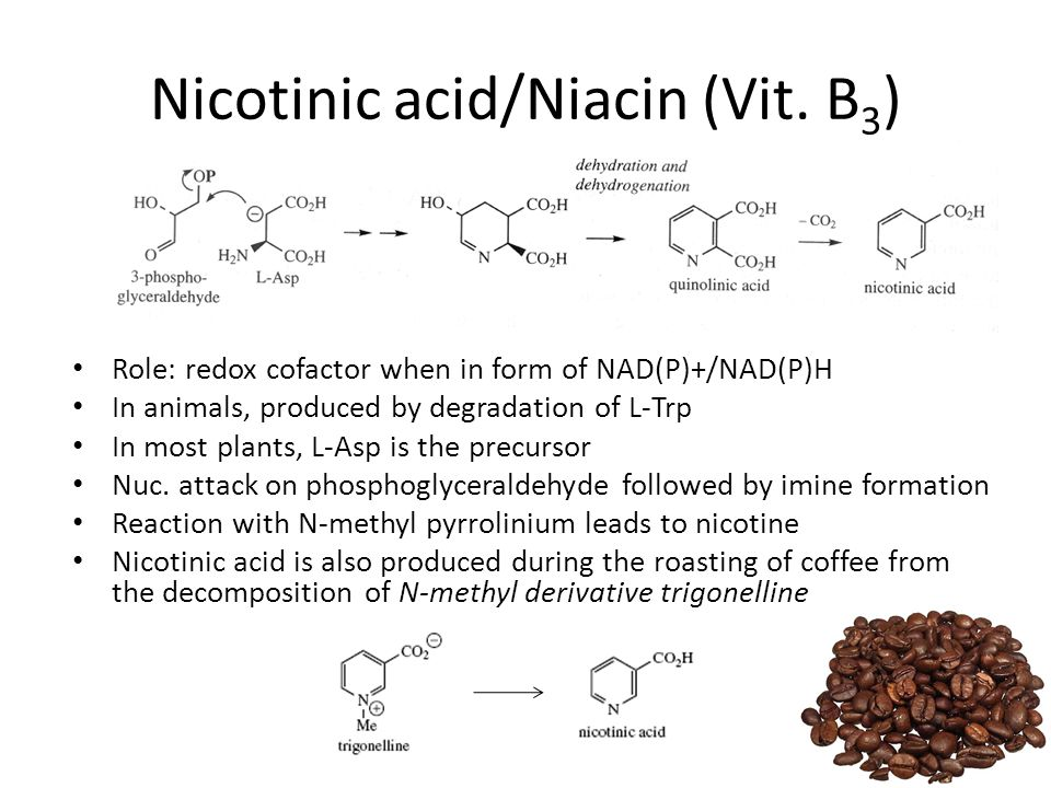 Nicotinic acid/Niacin (Vit.