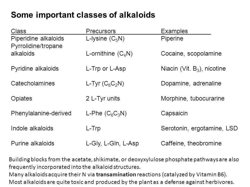Some important classes of alkaloids ClassPrecursorsExamples Piperidine alkaloidsL-lysine (C 5 N)Piperine Pyrrolidine/tropane alkaloidsL-ornithine (C 4 N)Cocaine, scopolamine Pyridine alkaloidsL-Trp or L-AspNiacin (Vit.