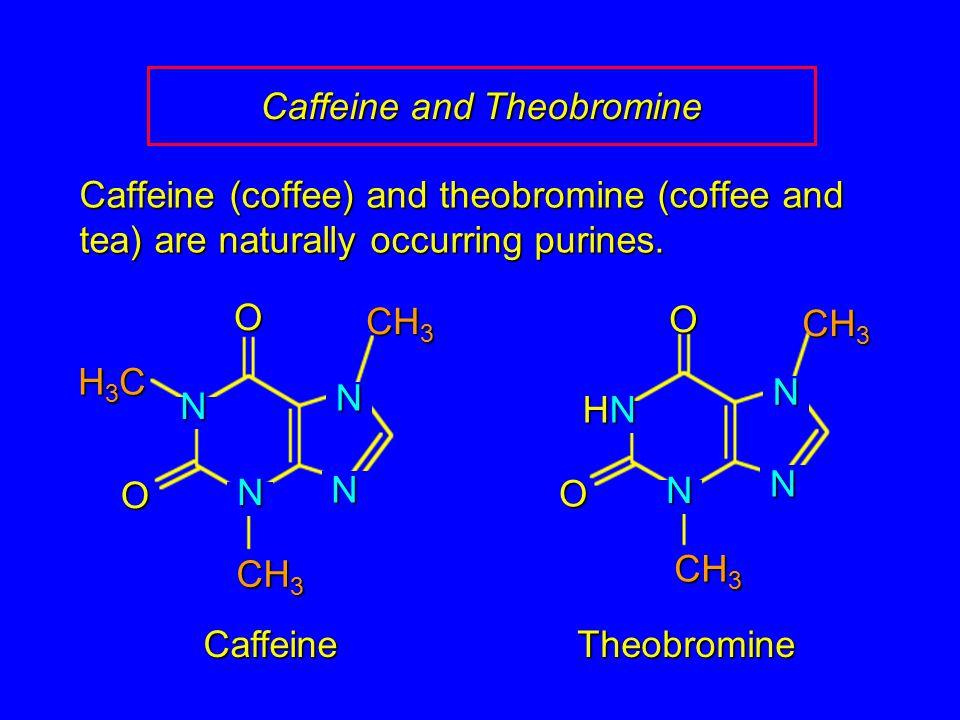 Caffeine and Theobromine Caffeine (coffee) and theobromine (coffee and tea) are naturally occurring purines.